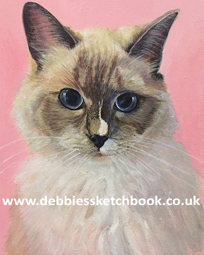 Prince Caspian, acrylic portrait of a cat